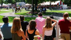 Five Questions to be Answered in 2019 Travers Stakes