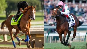 Justify (left) and Enable were two of the most memorable horses of 2018.