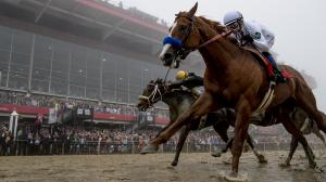 Justify remained undefeated with his Preakness Stakes win.