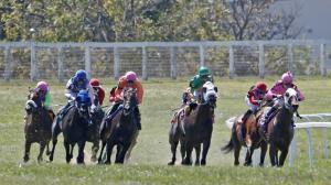 Stay Lucky Guide: Kentucky Downs Highlights Limited Schedule