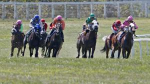 Betting the Kentucky Downs Ladies Turf Stakes on a $20 Budget