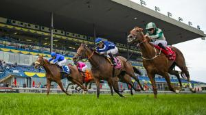 Walk In Marrakesh (far right), second by a nose in the 2019 Natalma at Woodbine, will attempt to win the Ontario Colleen