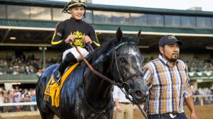 Knicks Go emerged as one of the best in his generation during fall 2018 with a win in the Claiborne Breeders' Futurity and a runner-up finish in the Breeders' Cup Juvenile.