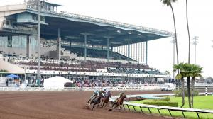 Racing at Los Alamitos, the host of the Los Alamitos Cash Call Futurity on Saturday.