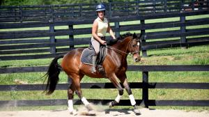 Taking It All in Stride: OTTB Mak Meets Every Challenge
