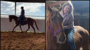 Thoroughbred Makeover Diary: Desensitizing Halo Carlos to Distractions