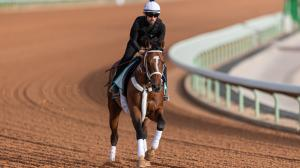 Maximum Security, McKinzie Head $20 Million Saudi Cup