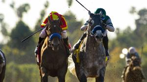 McKinzie (left) and Gift Box are among the top 10 Breeders' Cup Classic contenders in the country.