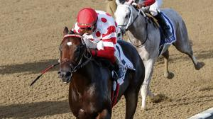 Five Questions to be Answered in the 2018 Breeders' Futurity