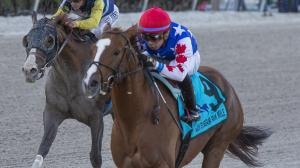 Mr Freeze Poised for Fireworks in Runhappy Metropolitan Handicap