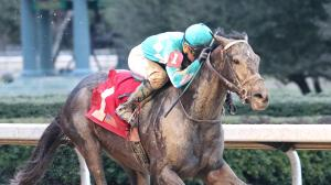 Evaluating My Boy Jack's Derby Chances After Breakout Win in Southwest