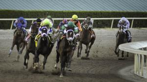 2021 Florida Derby at a Glance