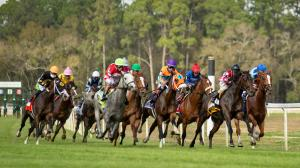Can Twitch Help Revolutionize Horse Racing?