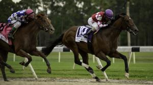 Helium Rises to Occasion for Upset Victory in Tampa Bay Derby