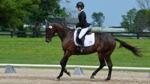 Nine Reasons to Visit Lexington for the RRP Thoroughbred Makeover