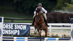 Twelve Things to Remember When Bringing Home an OTTB