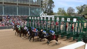 Twelve Things You Should Know About the 2019 Arkansas Derby