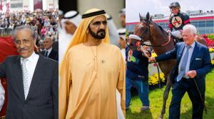 Taking a Closer Look at the Current Leading Owners of 2017