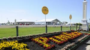 2019 Preakness Stakes by the Numbers