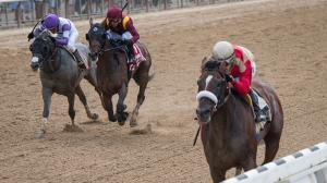 Preservationist (right) makes his debut at No. 3 on the list after winning the Suburban Stakes on Saturday.