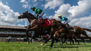 Ren Carothers' Pedigree Play at Saratoga for Aug. 7