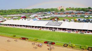 Horse Racing and Rainbows on Black-Eyed Susan Day