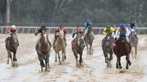 Saturday's Rebel Stakes featured an impressive win by Nadal (right).