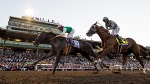 Five Questions to be Answered in 2019 Breeders' Cup Classic