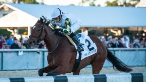Sole Volante Outfinishes Independence Hall to Win Sam F. Davis