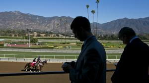 Santa Anita Park at a Glance: What You Need to Know
