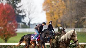 Breeders' Cup Features, Helping Horses During the Pandemic, and More Must-Click Links of the Week