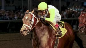 Seeking the Soul will race in the Pegasus World Cup on Saturday after finishing second in the race last year.