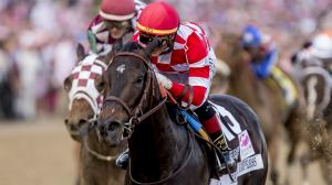 Kentucky Oaks winner Serengeti Empress is headed for the Breeders' Cup.