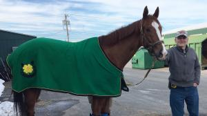 Thoroughbred Makeover Diary: Retraining Shanghaied a Family Affair