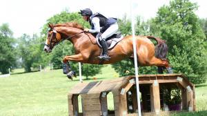 Bravery Key for Retired War Horse-Turned-Eventer Sharp Johnny