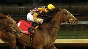 Signalman broke through with his first graded stakes win in the Kentucky Jockey Club Stakes.