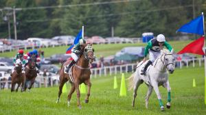 Ten Things to Know Before You Go: International Gold Cup