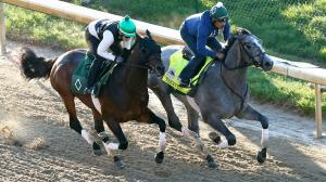 Tacitus, right, is among the top Kentucky Derby contenders now training at Churchill Downs.