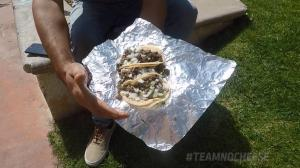 Tacos and Trifectas: Blue Grass Longshot