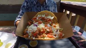 Tacos and Trifectas: Flavorful Fish Tacos, Arlington Million Play