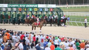 Dan's Double: Tampa Bay Downs Focus