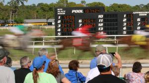 Belle's Best Bets: Key Longshots at Tampa Bay Downs and Oaklawn Park