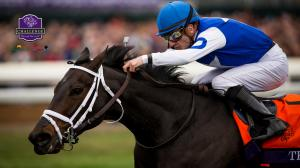 Getting to Know Tepin