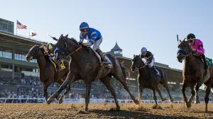 Thousand Words (blue silks) is among the top contenders on this year's Triple Crown trail.