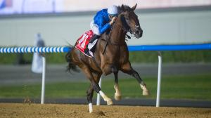 Thunder Snow Aims for History in Dubai World Cup