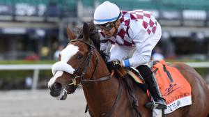 All Systems Go for Tiz the Law in Belmont Stakes