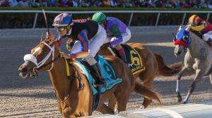 Betting the 2020 Gulfstream Park Oaks on a $20 Budget