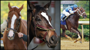 Eight from the First 18: The Most Popular Racehorses of This Century (So Far)