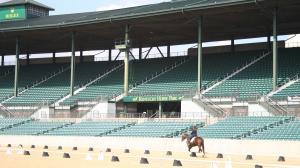 Thoroughbred Makeover Wrap-Up: Community and Conquering Challenges with Wex