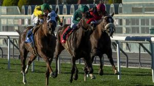 The top three finishers in the Megahertz Stakes, Vasilika (outside), Ms Bad Behavior, and Zaffinah (rail), square off again in the Buena Vista Stakes on Saturday.